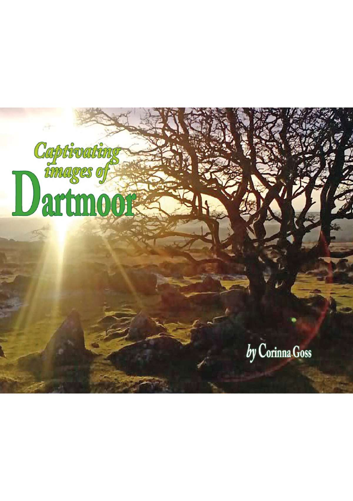 4242 - Captivating Images of Dartmoor